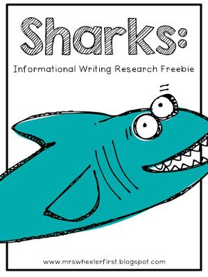 Shark Informational Writing