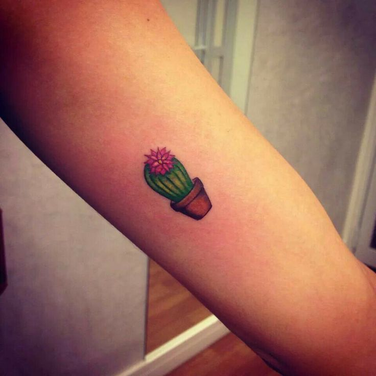 Small Cactus With Pot Tattoo On Bicep