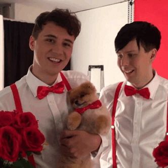 Dan and Phil AND DOGS! << CUTENESS OVERLOAD