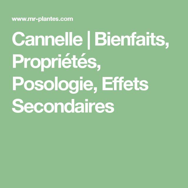 Cannelle | Bienfaits, Propriétés, Posologie, Effets Secondaires