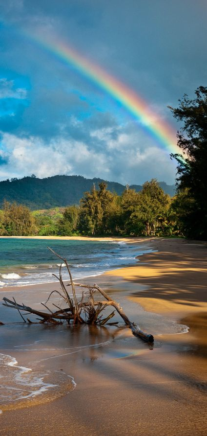 Kauai rainbow in Hawaii • photo: Joshua Gunther on Flickr