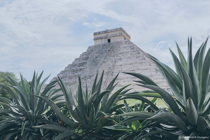 Quel site maya visiter lors d'un voyage au Mexique, dans la péninsule du Yucatan ? Voici un comparatif des ruines mayas de notre road trip !