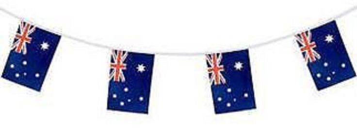 Australian Party Supplies - Flag Bunting Polyester 6m with 15 Flags 20cm x 30cm