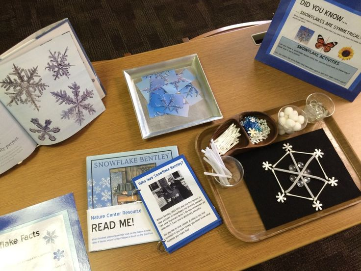 Nature Center Snowflake Study: A wintertime provocation in the library and at home