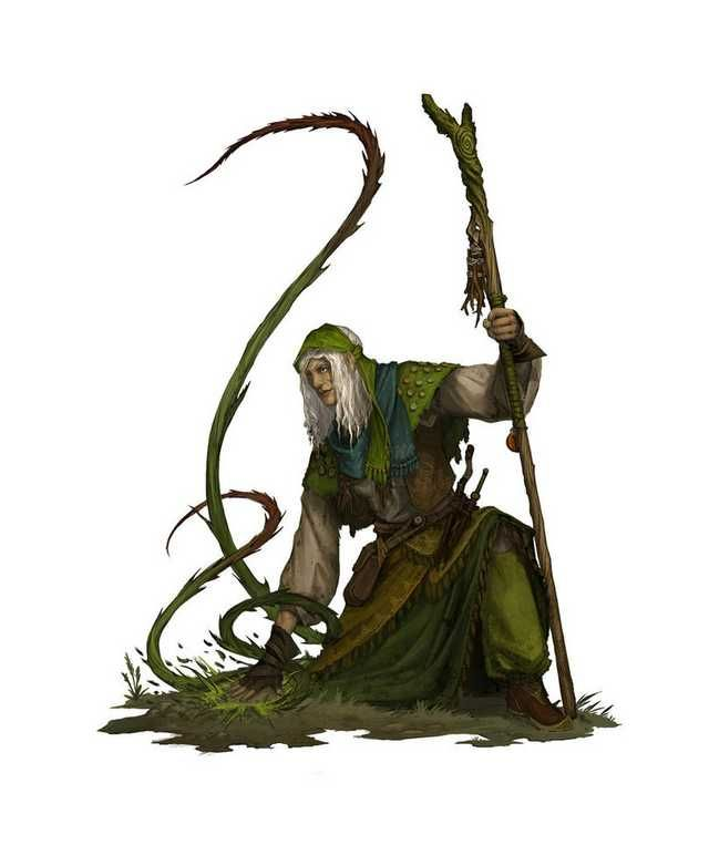 Dungeons Dragons Wizards Warlocks Druids Sorcerers I