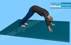 Sciatica Exercise Watch How to Stretch Lower Back and Legs in 3D Pinned by SOS Inc. Resources http://pinterest.com/sostherapy.