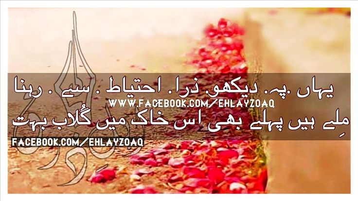 Join www.facebook.com/ehlayzoaq for a lot more