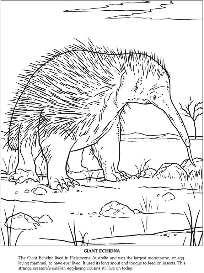 ice age animals coloring pages - photo#23