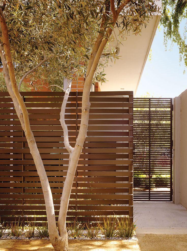 végétation devant mur d'entrée