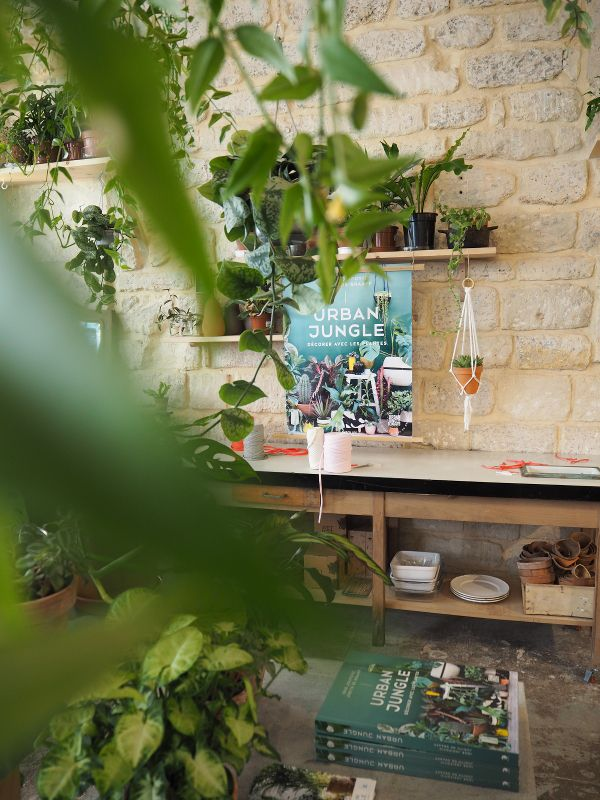 12570 best urban jungle bloggers images on pinterest plants indoor plants and houseplants. Black Bedroom Furniture Sets. Home Design Ideas