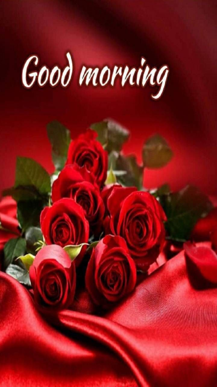 Sweet Heart Rose Good Morning Image Pictures Photos And Images For Facebook Tumb Good Morning Love Messages Good Morning Love Good Morning Beautiful Flowers