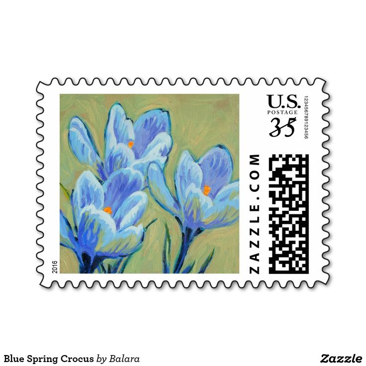 Blue Spring Crocus Postage Stamp