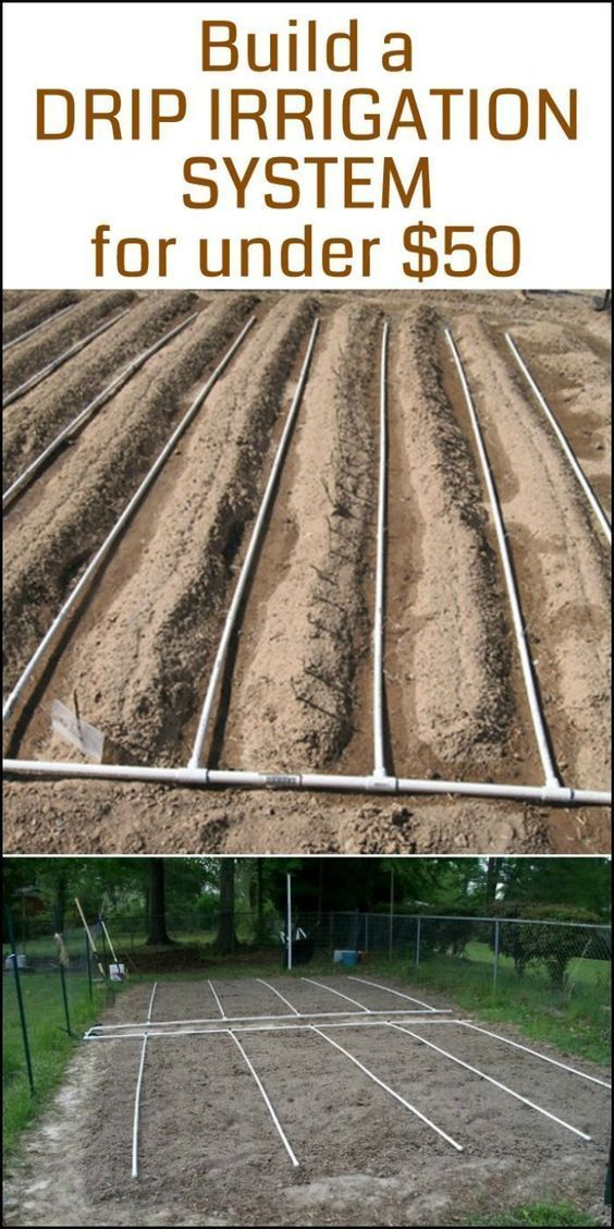 Need a drip irrigation system in your vegetable garden? Here's a project for you! #vegetablegardening