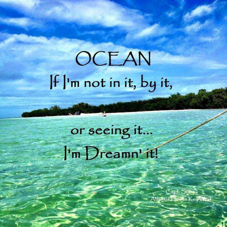 Dreaming Of Summer Quotes: Ocean Quotes, Ocean Beach, Beach