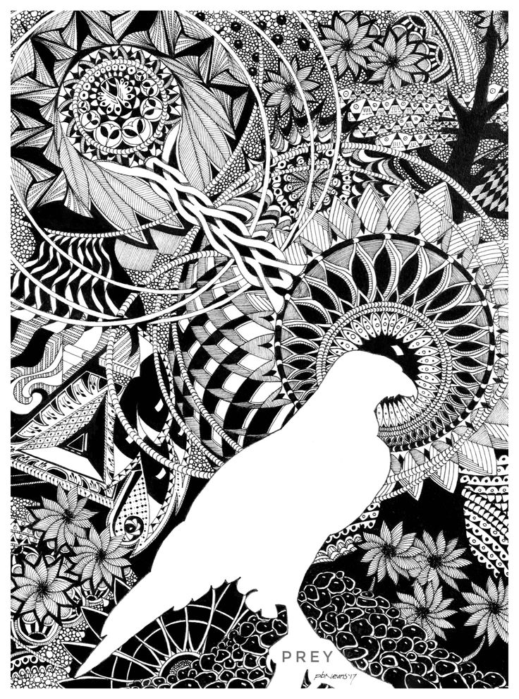 """8X10 pen and ink drawing in the """"zentangle"""" style. I chose a red-tailed hawk for the foreground negative space."""