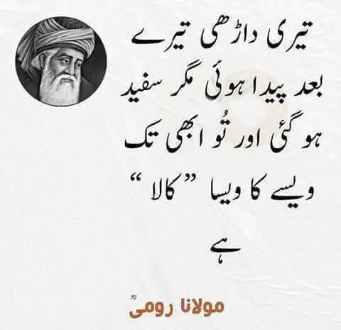 Best 25 urdu quotes ideas on pinterest urdu poetry for Gardening meaning in urdu