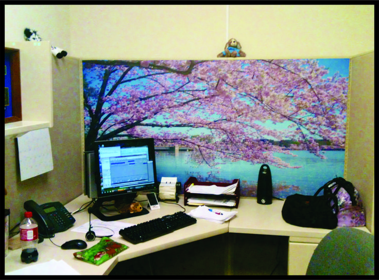 Cubicles office art and art ideas on pinterest Office cubicle design ideas