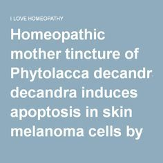 Homeopathic mother tincture of Phytolacca decandra induces apoptosis in skin melanoma cells by activating caspase-mediated signaling via reactive oxygen species elevation | I LOVE HOMEOPATHY