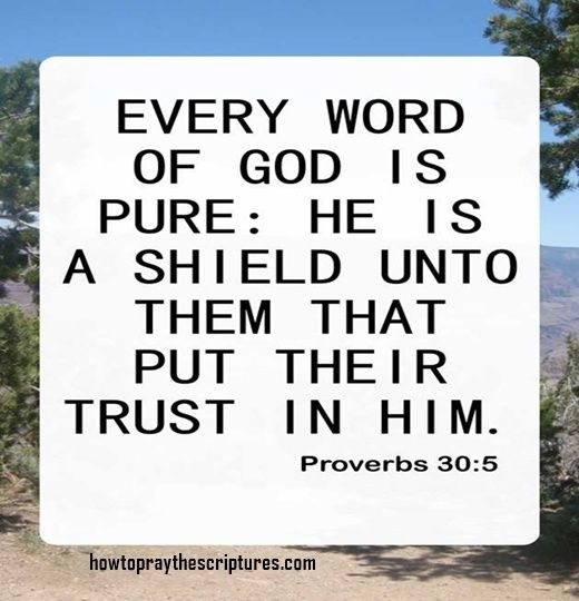 Quotes On Strength Bible: 17 Best Strength Bible Quotes On Pinterest