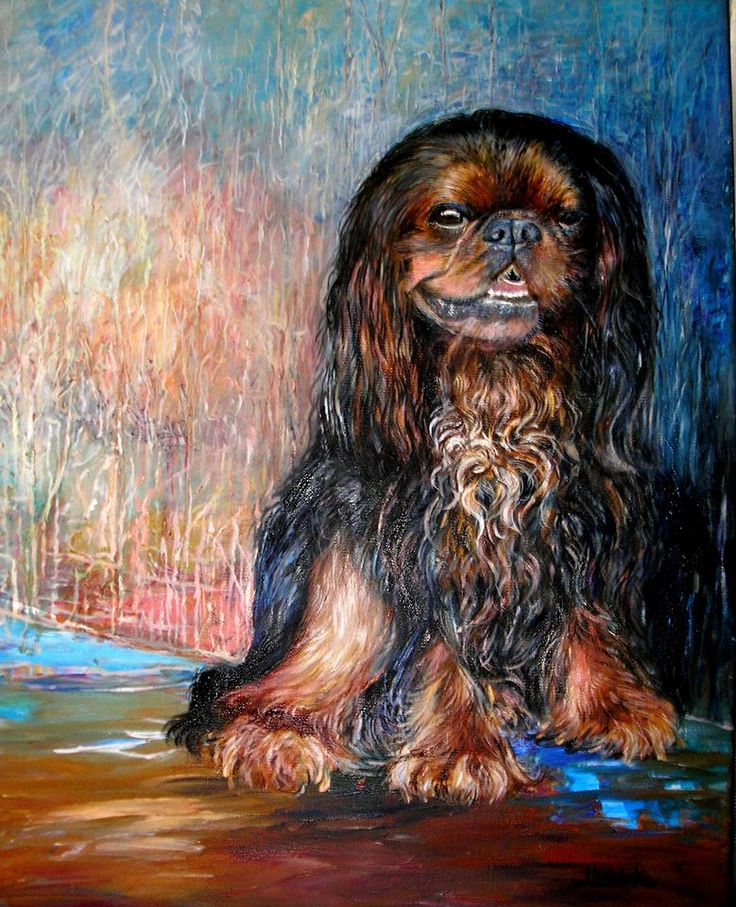 Sorju king charls spaniel, oil painting