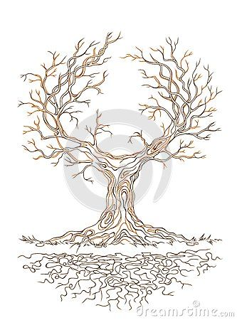 17 best images about dessins arbres anim s on pinterest - Dessin de arbre ...
