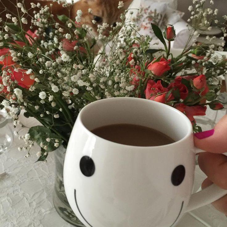 #günaydın#gülleriniçindencanım #ali#bizimevinhalleri #goodmorning#rose#ensevdiğim#coffee #instacat#catlovers #petstagram #vsco #vscocam #vscodaily #vscoturkey #vscocamphotos #instagram#instalife #instalike#gününüzaydınolsun#smile#gülümse