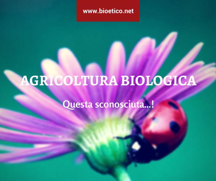 """""""#Bio"""" non è una moda bensì una scelta imprenditoriale con numerosi effetti positivi sull'#ambiente…"""
