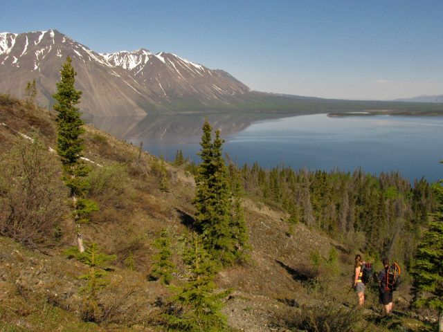 King's Throne | Hiking, skiing, and snowshoeing trails in the Yukon | yukonhiking.ca