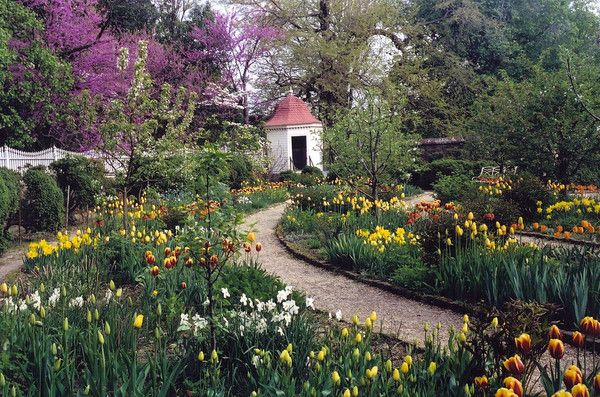 With President's Day on Monday and George Washington's birthday this coming  Monday, I thought this would be a great time to talk about George  Washington's love for gardening.