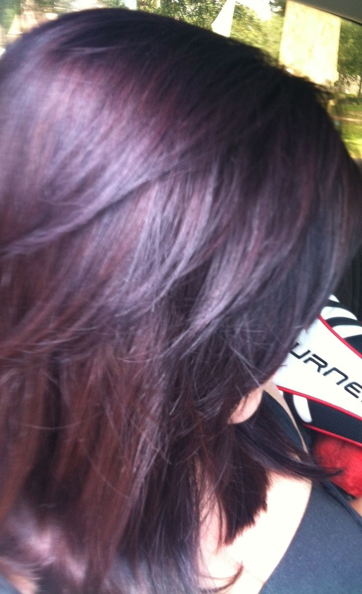 Dark brown hair with red purple tint