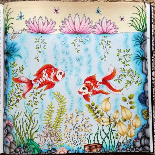 flor azul jardim secreto : flor azul jardim secreto:secret garden flor azul atelier gina pafiadache jardim secreto