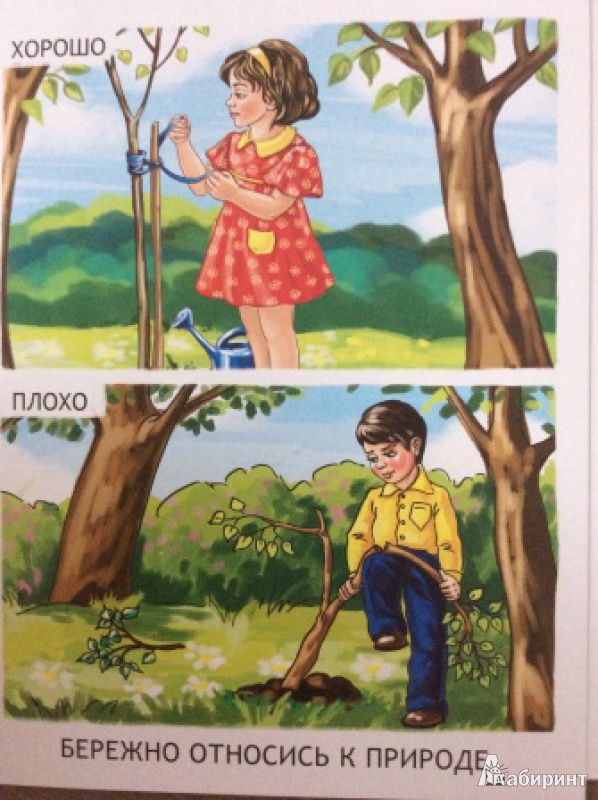 Иллюстрация 5 из 19 для Обучающие карточки. Уроки поведения для малышей | Лабиринт - книги. Источник: Alsom