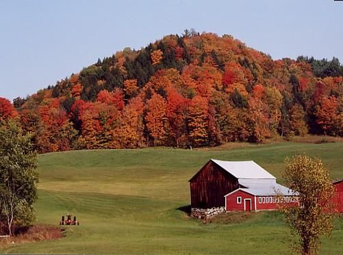 Vermont: barns, cool weather, forests, rolling hills...what else do I need?