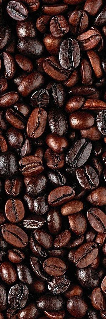 Denim and Chocolate — #brown