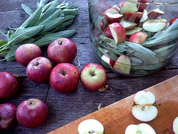 apple and sage for vinegar