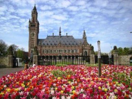 La Haya - holanda: Mosques, Holandala Hayaproduccion, Hayaproduccion Vicari