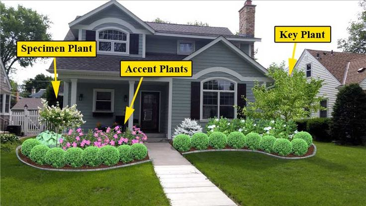 When designing any plant bed, there are 3 main plants you'll want to focus on. Specimen plants (usually an ornamental tree), accent plants (roses or other shrub to provide color), and a key plant (larger tree/shrub to help house feel the right size).