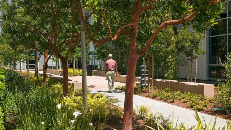 Palo Alto Medical Center -