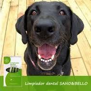 ¿Qué crees que te pasaría si estuvieras toda tu vida sin cepillarte los dientes? Como poco, tendrías mal aliento, ¿verdad? Pues eso es lo que les ocurre a muchos perros. La buena noticia es que el mal aliento canino también se puede combatir. ¿Quieres saber cómo?