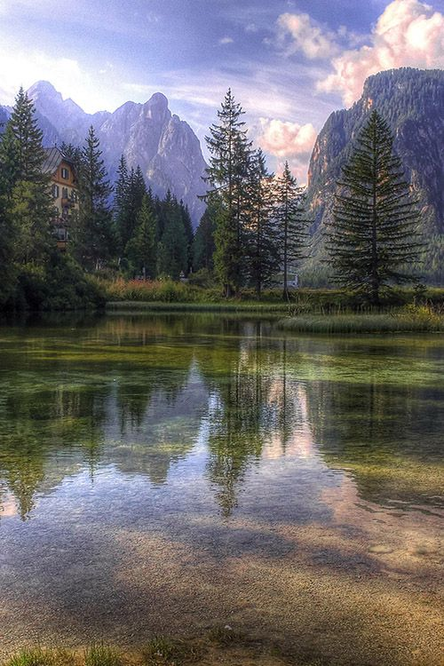 Reflection in a dream ~