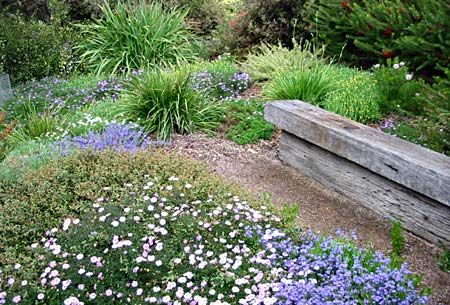 Australian Native Garden Inspiration - Chris Larkin's Garden, Victoria.