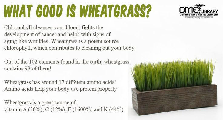 Wheatgrass has so many benefits, there is basically no downside of consuming it
