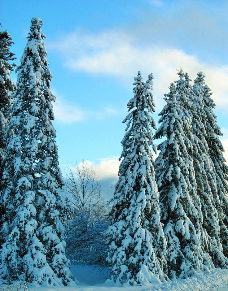 Vermont - 12/13/14