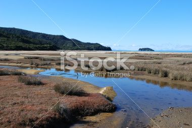 Marahau Wetlands, Abel Tasman, Nelson Royalty Free Stock Photo