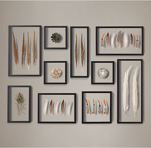 Framed Feather Collection - for Nikkita & Carlos