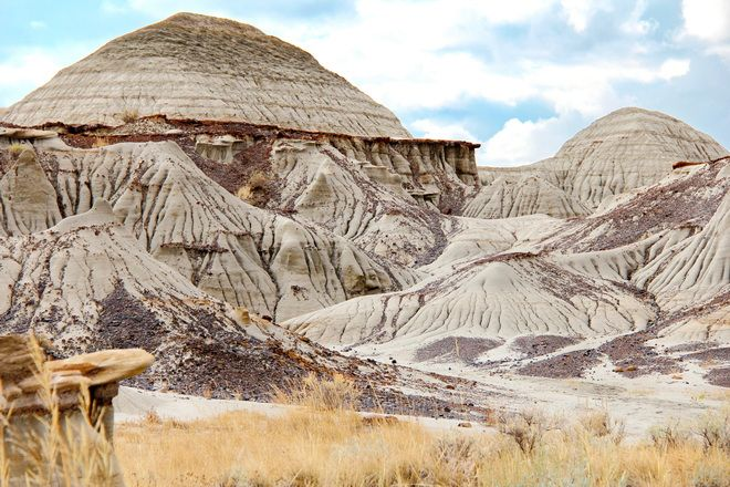 Dinosaur Provincial Park - 21 things to do in Alberta, Canada