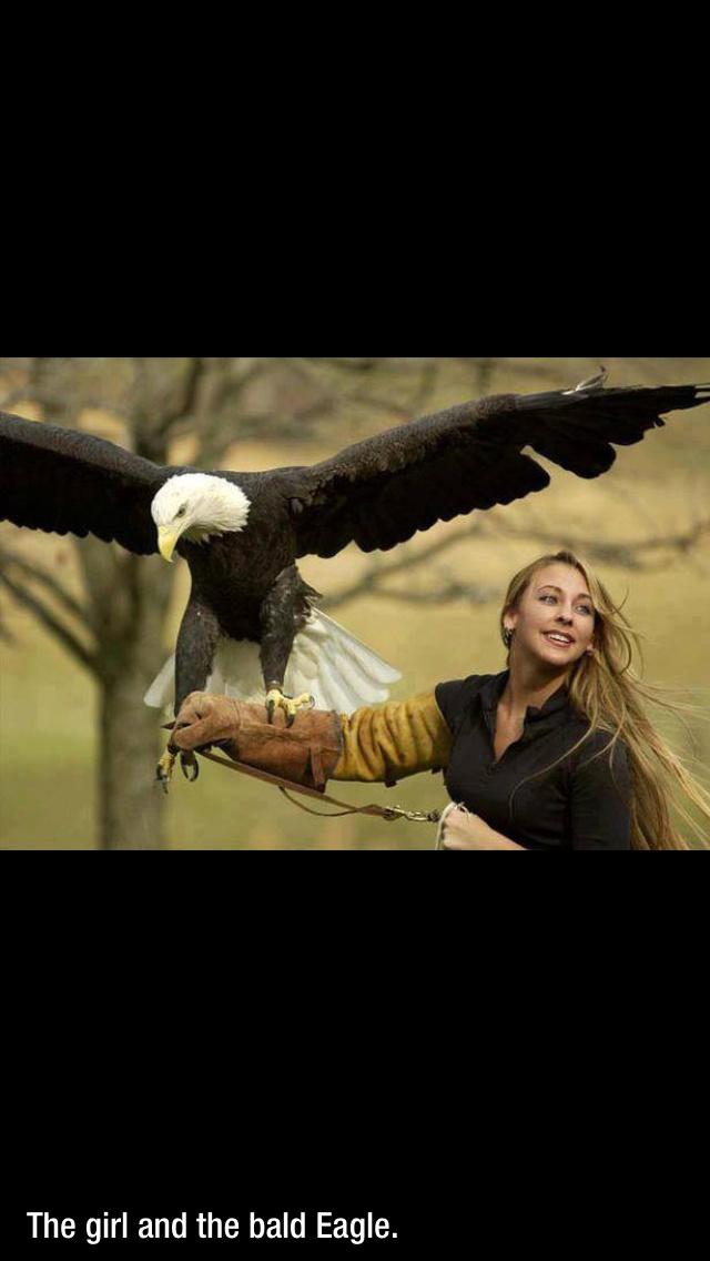 EagleGod Healing
