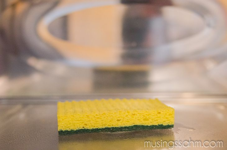 A kitchen sponge can contain up to 10 million bacteria per square inch....need to sanitize your kitchen sponge and here's how to do it without chemicals too.