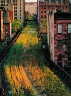 Oude New Yorkse spoorbaan wordt wandelpark 'in the sky'