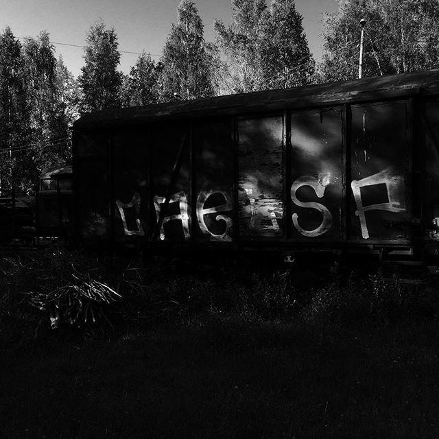 Graffiti train, Finland.